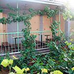 Гостевой дом «У Григория»