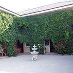 Гостевой дом «Дольче Вита»